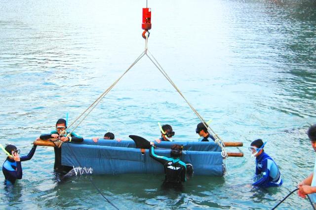 イルカの引越し201010b